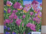 Полежаева Полина  Горные тюльпаны живопись.JPG